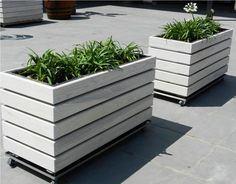 How to Build Wooden Planters - http://www.mobilegumti.com/how-to-build-wooden-planters/ : #Garden Wooden planters – You can build outdoor and indoor garden with planters made of wood like cedar or oak. The size and design can be decided by you. Gardening has always been a very fascinating activity to many people especially elders. In how to build a wooden planter, there are things to put on m...