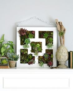 Prefer an angular design to a rounded one? Make this Lack vertical succulent garden instead. | 19 Incredibly Clever Ways To Use Ikea Products As Your Garden