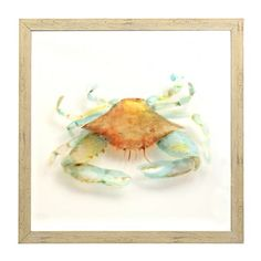 Watercolor Crab Shadowbox | Kirklands