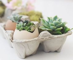 here is another fun Easter project from our #diysucculentsbook!