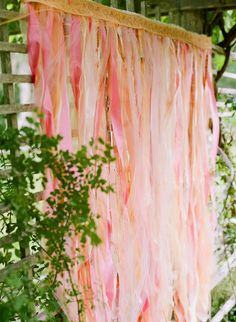 stacey-hedman-cape-cod-lavender-farm-104 Photo backdrop made of pretty pink, peach and coral ribbons.  Ribbon backdrop