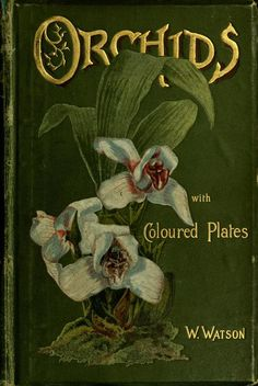 Orchids (1890), William Watson.