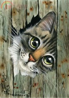 Es besteht eine gute Chance, dass Sie diese Trance-Musik Like cats? Like art? There is a good chance that you will enjoy this trance music … – Trance Musik, Animal Paintings, Animal Drawings, Pencil Drawings, Earth Design, Cat Drawing, Crazy Cats, Cat Art, Pet Birds