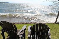 À la Recherche de Liberté: En état de conscience Outdoor Chairs, Outdoor Furniture, Outdoor Decor, Conscience, Search, Garden Chairs, Backyard Furniture, Lawn Furniture, Outdoor Furniture Sets