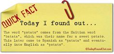 Where the Word Potato Comes From