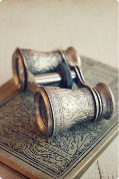 antique silvery binoculars | More vintage lusciousness here: http://mylusciouslife.com/photo-galleries/vintage-style-lovely-nods-to-the-past/