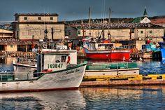 Bon my Vista by Kim Goodyear, Newfoundland photographer Newfoundland Canada, Newfoundland And Labrador, Canada Cruise, Canada Travel, Beautiful Places To Visit, Beautiful Things, Canada Eh, Cruise Port, Island Tour