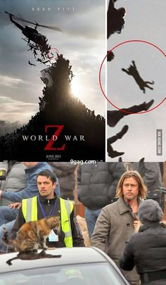 the zombie cat in World War Z Really Funny Memes, Stupid Funny Memes, Z Movie, Dog Dna, The Stranger Movie, Zombie Movies, Geek Humor, Funny Clips, Resident Evil