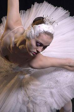 Hannah O'Neill – Ballet: The Best Photographs Ballerina Dancing, Ballet Dancers, Ballet Bolshoi, Ballerina Tutu, Dance Photos, Dance Pictures, Dance Movement, Ballet Photography, Ballet Beautiful