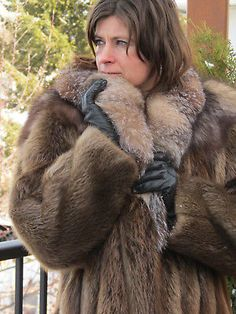 d886374e6 42 Best Busy Beaver Furs images in 2019 | Busy beaver, Fur, Fur coats