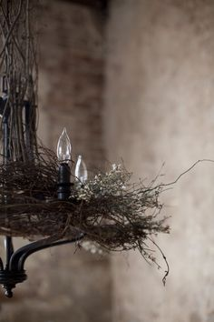 Bird nest chandelier -- LOVE this beautiful piece! Deco Luminaire, Bird Cages, Bird Nests, Ideias Diy, Decoration Design, Perfect World, Rustic Charm, Country Charm, Rustic Elegance