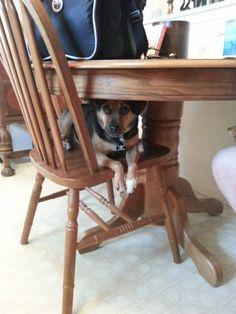 Hiding out...