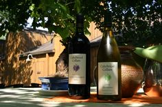 Cakebread Cellars - Rutherford, CA  Another place I could sit and sit and sit and sit...