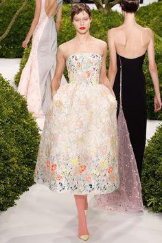 Christian Dior Spring 2013 Couture Fashion Show - Carolin Loosen (Elite)