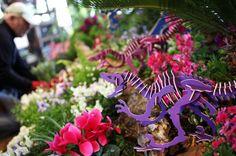 Photos: Olbrich's Spring Flower Show