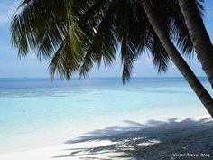 The Maldives. Vilamendhoo Island