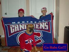Un colosse tricolore, par Kim Chagnon/ Habs enforcer dog, submitted Kim Chagnon