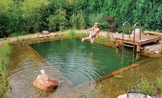 schwimmteich