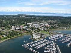 Aerial view of Comox, BC. Vancouver Bc Canada, Vancouver City, Vancouver Island, West Coast Fishing, West Coast Canada, Real Estate Prices, Mount Washington, Whale Watching, Pacific Coast