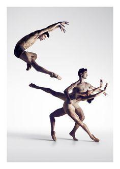 The Australian Ballet 2017 Season Ballet Poses, Dance Poses, Ballet Dancers, Contemporary Dance, Modern Dance, Dance Photography Poses, Australian Ballet, Human Poses Reference, Dynamic Poses