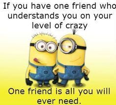 """Here's a great and New collection of Funny and Hilarious Minions for you.Just scroll down and keep reading these """"Top 25 New Minion Memes"""". And don't forget to share with your friends for make him laugh. Minion Humour, Funny Minion Memes, Minions Quotes, Funny Jokes, Funny Dp, Minion Sayings, Funny Friend Memes, Image Minions, Cute Minions"""