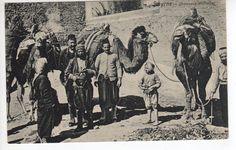 Nice c1908 Turkey, Smyrna, Camels, Chameaux Decharges