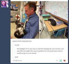 cat in class