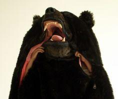 Go undercover - bear style