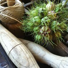 Seedpots of love in a mist (juffertje in 't groen) SEES Brocante & Woondecoratie