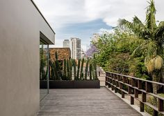 Campana brothers use palm fibre to give hairy texture to Brazilian house