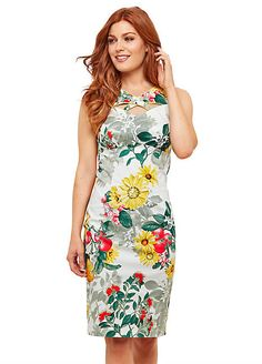 6a18d8f31b Joe Browns Floral   Fruit All Over Print Dress