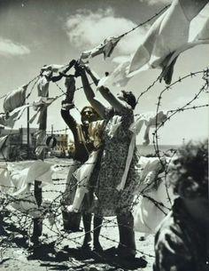 Barbed Wire Clothes Line Holy Land Jewish Refugees Photo Jaffa Tel Aviv Acme | eBay