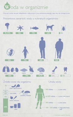 woda w organizmie człowieka