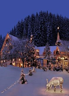 It is Christmas night and its beautiful outside. Christmas Feeling, Christmas Night, Winter Christmas Scenes, Santa Christmas, Christmas Scenery, Christmas Landscape, Christmas Is Coming, Winter Landscape, Winter Wallpaper