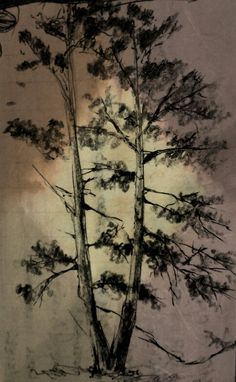 drzewo. szybki szkic, 2015.