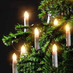 Juletrelys 20 lys, inne