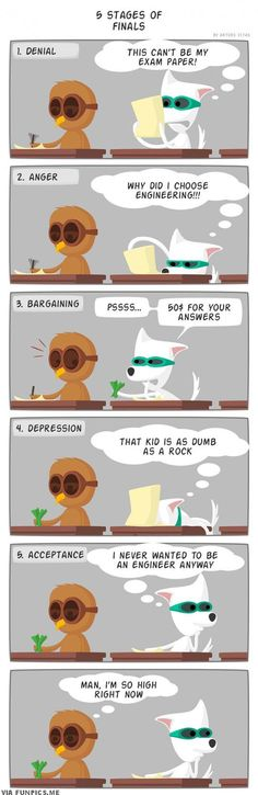awesome The five stages of Finals