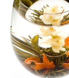 工芸茶専門店クロイソス -CroesuS- 「スタイリッシュ」   鮮やかな百合から立ち上がるジャスミン。 爽やかな風が香ります。  茶種:緑茶 花種:ジャスミン・姫百合 産地:中国福建省   ¥360   http://mercure.shop-pro.jp/?pid=21616561