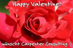Ärgere dich nicht darüber, dass der Rosenstrauch Dornen trägt, sondern freue Dich darüber, dass der Dornenstrauch Rosen trägt. (Arabisches Sprichwort) Verschenken SIe heute Freude in Form von Rosen (;-) Happy Valentine!