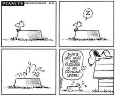 This Snoopy and Woodstock cartoon strip was published August 1970 & I was born August 1969 Snoopy Cartoon, Snoopy Comics, Peanuts Cartoon, Peanuts Snoopy, Peanuts Comics, Snoopy Love, Snoopy And Woodstock, Charles Shultz, Snoopy Quotes