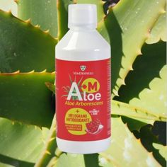 Il nostro succo di Aloe + Melograno ( A+M) ha un' azione antiossidante, grazie alle proprietà del Melograno, ed è anche ricco di #VitaminaC… Aloe, Essential Oils, Soap, Personal Care, Instagram, Vitamin C, Self Care, Personal Hygiene, Soaps