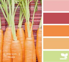pink + carrot color palette