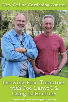 Join Joe Lamp'l and Craig LeHoullier and learn how to plant, grow, care for, and harvest your own epic tomatoes. In this practical hands-on course with Joe and Craig as your guide, you'll learn everything you need to know to have your best tomato growing season yet. Joe and Craig will be growing their tomatoes right along with you and sharing those experiences in the course as they go. | #tomatoes #howtogrowtomatoes #growingtomatoes #epictomatoes #onlinelearning #gardeningcourses Tomato Plant Care, Tomato Seedlings, Gardening Courses, Good Environment, Growing Tomatoes, Good Morning America, Grow Your Own Food, Green Life, News Online