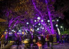 Shimmy your way through Disco Lane while listening to the awesome soundtrack provided by KCRW Radio. #LAZooLights