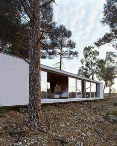 Render by @onlyvis ・・・ EXTERIOR PRACTICE #onlyvis #interior #interiordesign #design #house #digitalart #3d #3dsmax #corona #coronarender #render #art #forest #nature #river #archviz #realestate #marketing #renderbox #instarender #cgsociety #homedesign #cgi #render_contest