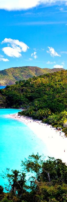 2. Trunk Bay, St. John, USVI Trunk Bay is a body of water and a beach on St. John in the United States Virgin Islands. Trunk Bay is part of the Virgin Islands National Park. Trunk Bay is named for the Leatherback turtle, which is endemic to the U.S.V.I. and is locally known as trunks. The …