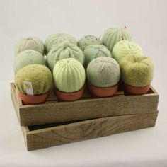 pin cushion cacti - twelve felted cacti displayed in wooden tray Cute Crafts, Felt Crafts, Wet Felting, Needle Felting, Cumple Sheriff Callie, Homemade Gifts, Diy Gifts, Cactus Craft, Crochet Cactus