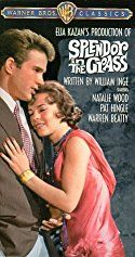 Natalie Wood and Warren Beatty in Splendor in the Grass Natalie Wood, Tab Hunter, Carolyn Jones, Warren Beatty, James Dean, See Movie, Movie Tv, Sandy Dennis, Movies