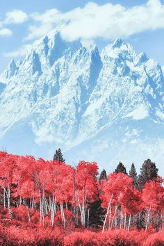 Grand Teton, Wyoming, by Matt Anderson, on 500px.