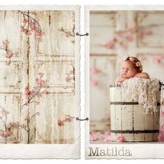 DOOR BACKDROPS ON SALE!! Design Revolution~ Accessories for the Extraordinary Photographer Facebook Page